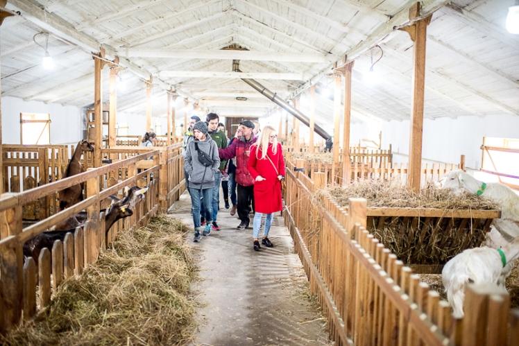 farm-21
